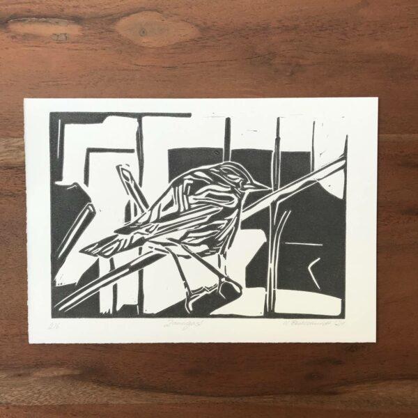 Linolschnitt Zaungast